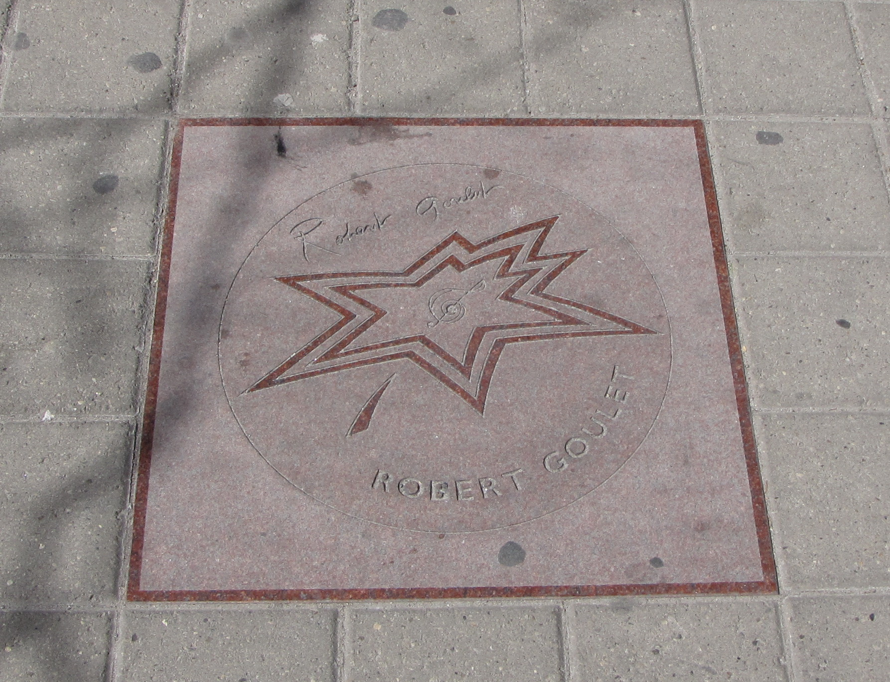 Star on Canada's Walk of Fame (2006)